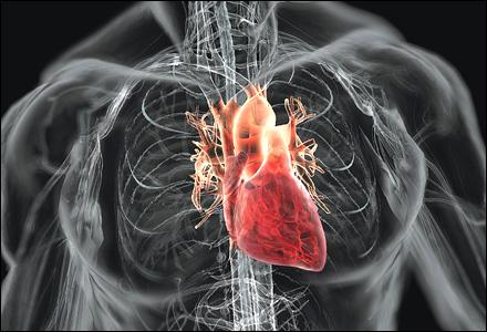 Jantung yang Berdebar Mungkin Bisa Awal Dua Penyakit Ini